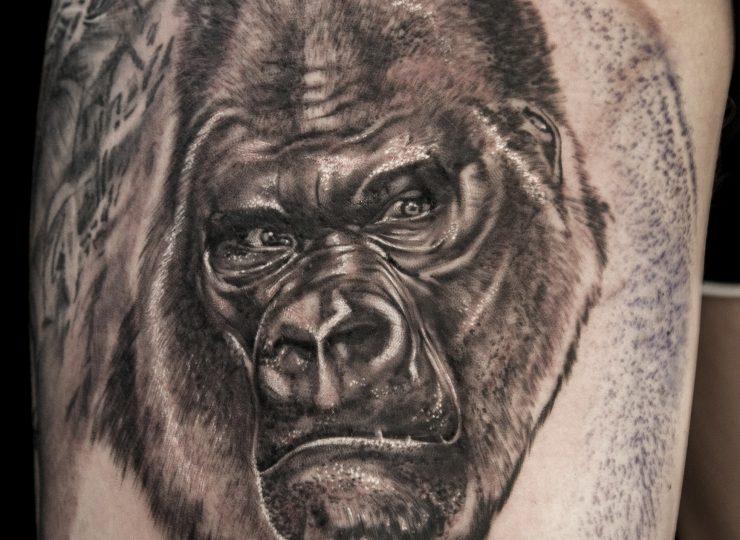 GorillabyGiGi